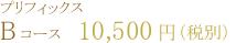 プリフィックス Bコース   10,500円