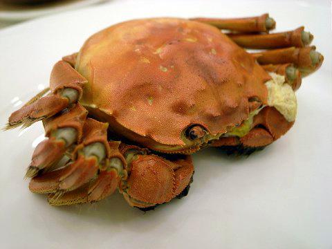 旬到来!上海蟹